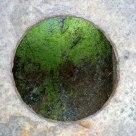 damp hole